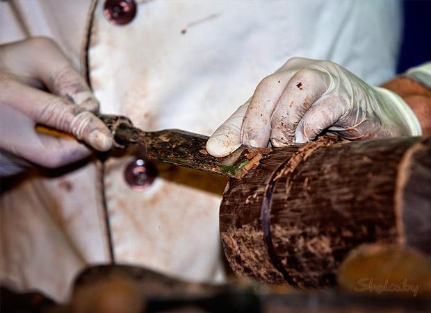 Праздник Шоколада во Львове